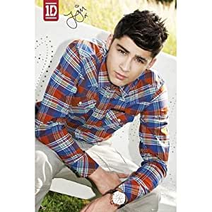 (24x36) One Direction Zayn Music Poster