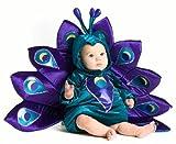 Baby Peacock Infant / Toddler Costume 赤ちゃんピーコック幼児/幼児コスチューム サイズ:12/18 Months
