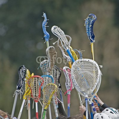Leisure Wall Decals Lacrosse Sticks To The Sky - 18 Inches X 18 Inches - Peel And Stick Removable Graphic front-769906
