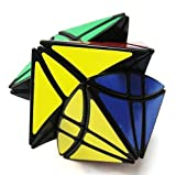 Lanlan Windtalkers Puzzle Cube -Speed Cube -REX - Black