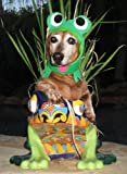 """Infrognito! frog costume hat for dogs and cats (Lg-Xlg (16-24"""" collar))"""