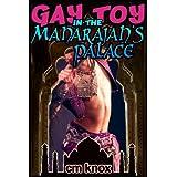 Gay Toy in the Maharajah's Palace (Gay Historical Erotica) ~ C.M. Knox