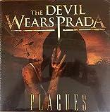 Plagues / Dear Love a Beautiful Discord