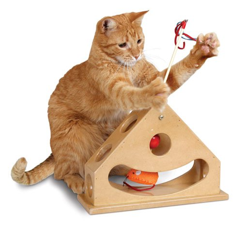 Smart Cat 3836 Tick Tock Teaser – Case of 4