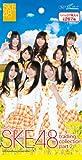 SKE48 トレーディングコレクション PART2 BOX