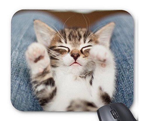 眠る子猫のマウスパッド 1:フォトパッド( 世界の猫シリーズ ) [並行輸入品]