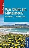 Was blüht am Mittelmeer?: Über 870 Fotos