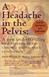 img - for A Headache in the Pelvis: A New Understanding and Treatment for Chronic Pelvic Pain Syndromes [Perfect Paperback] book / textbook / text book