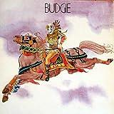 Budgie Budgie