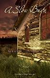 A Slow Burn (Defiance Texas Trilogy, Book 2)
