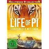 Life of Pi - Schiffbruch