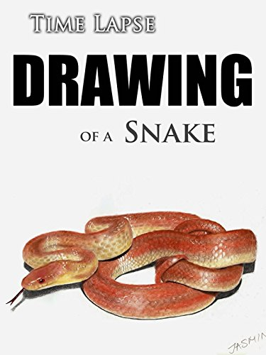Clip: Time Lapse Drawing of a Snake