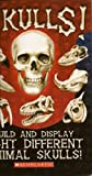 img - for Skulls! book / textbook / text book