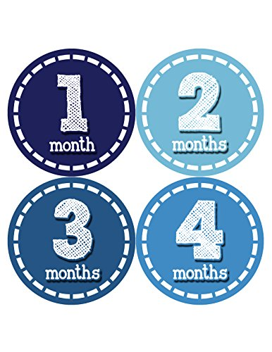 Months in Motion 081 Monthly Baby Stickers Baby Boy Month 1-12 Milestone Age