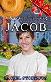 A Lancaster Amish Life for Jacob: Trials & Tribulations (The Lancaster Amish Home for Jacob Series)