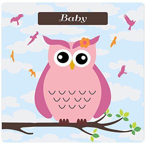 "Rikki Knighttm ""Baby"" Name - Cute Pink Owl On Branch With Personalized Name Design On 8"" X 8"" High Definition Museum Quality Almunimum Print - Metal Art Print - With Floating Block Wall Hangers (Proudly Made In The Usa) front-642578"