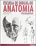 img - for ESCUELA DIBUJO ANAT HUMANA book / textbook / text book