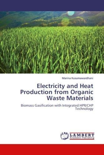 Electricity and Heat Production from Organic Waste Materials: Biomass Gasification with Integrated HPR/CHP Technology