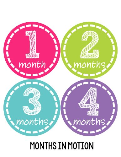 Months in Motion 148 Monthly Baby Stickers Milestone Photo Prop Newborn Girl