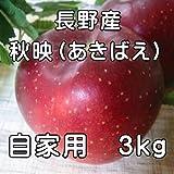 ご家庭用に!長野産 秋映りんご 3kg