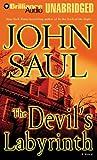 The Devils Labyrinth: A Novel