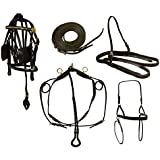 Leather Horse Driving Harness Set 9 Items with Brass Fittings Horse, Pony, or Mini