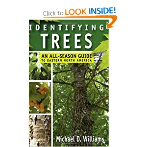Identifying Trees: An All-Season Guide to Eastern North America e-book downloads