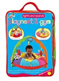 Galt Lights and Sounds Playnest and Gym