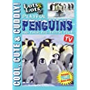 Lots and Lots of Playful Penguins and Their Toe-Tappin' Feet