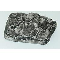 Hide A Key Holder Faux Outdoor Rock Fake Storage Spare Hider Safe Gift Novelty !