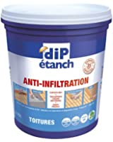DIP ETANCH TOITURE 0L75 GRIS CIMENT