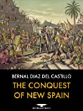 img - for The Conquest of New Spain book / textbook / text book