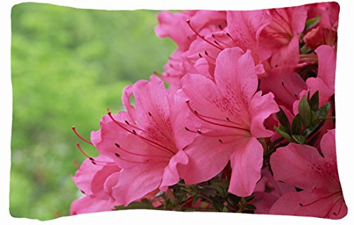 Microfiber Peach Standard Soft And Silky Decorative Pillow Case (20 * 26 Inch) - Nature Flowers Flowers Pink Flowers front-894848