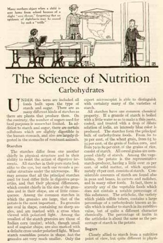 4-Pg 1914 Article On The Science Of Nutrition ~ Carbohydrates, Starches & Sugars Original Paper Ephemera Authentic Vintage Print Magazine Ad / Article