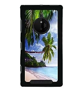 printtech Beach Hawaii Sea Back Case Cover for Nokia Lumia 830
