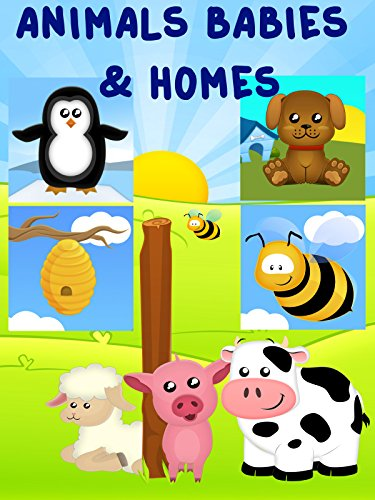 Learning Animals Babies and Homes Video for Kids