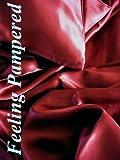 4 Pcs Luxurious 100% Silk Charmeuse Sheet Set Queen Burgundy Half of Retail!