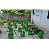 "Grow Bag For Terrace Garden ( 12"" X 12"" ) Hdpe Bags Pack Of 5 - SriSai Naturals"