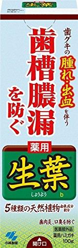 生葉(しょうよう)b 100g