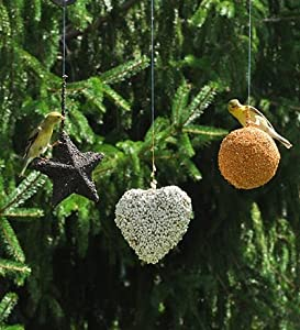 Set Of 3 Hanging Bird Seed Ornaments, In Ball