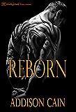 Bargain eBook - Reborn