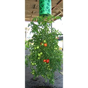 Felknor Ventures 82506 Topsy Turvy Upside-Down Tomato Planter