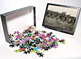 Photo Jigsaw Puzzle of Silkeborg, Denmark - Youth Hostel