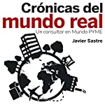 Crónicas del mundo real: Un consultor en Mundo PYME [Chronicles of the Real World: A Consultant to the SME World] | Javier Sastre Martín