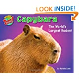 Capybara: The World's Largest Rodent (More Supersized!)