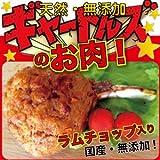 ドッグダイナー 国産・天然の素材の犬のごはん(犬 手作りごはん)ギャートルズのお肉 1本 無添加・手作り・低カロリーの犬のご飯