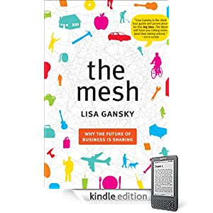 The Mesh presents a compelling metaphor for social media and technology-powered business.