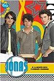Jonas Brothers -- Jonas 2010 Oversized Poster Calendar
