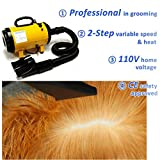 3.2HP 2 Speed Adjustable Heat Temprature Pet Grooming Force Hair Dryer With 3 Different Nozzles