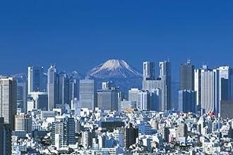 1000ピース 四季の詩 新宿、富士遠望 10-1133